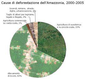 Cause di deforestazione dell'Amazzonia, 2000-2005